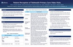 Patient Perception of Telehealth Primary Care Video Visits